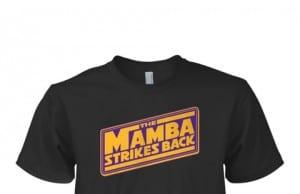 Mamba Strikes Back